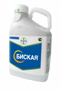 pr-agro-biskaya-md