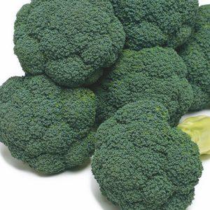 pr-agro-atlantis-f1-brokkoli-enza-zaden