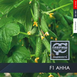 pr-agro-anna-f1-ogurecz-gavrish