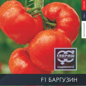 pr-agro-barguzin-f1-tomat-gavrish