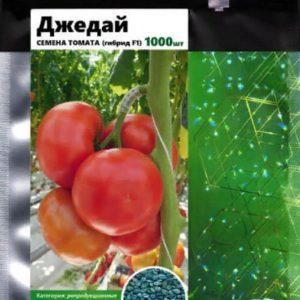 pr-agro-dzhedaj-f1-tomat-gavrish