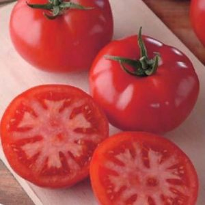 pr-agro-general-f1-tomat-sakata