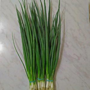 pr-agro-gringo-f1-luk-na-zelen-grinomika