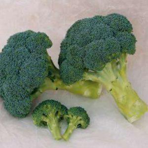 pr-agro-hronos-f1-kapusta-brokkoli-sakata