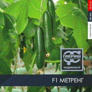 pr-agro-metreng-f1-ogurecz-gavrish