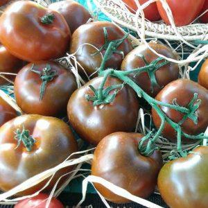 pr-agro-naomi-f1-tomat-gavrish