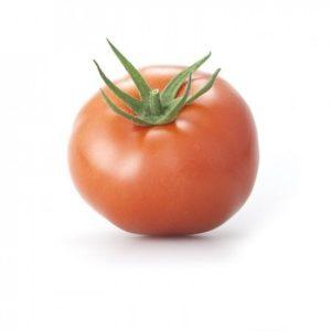 pr-agro-managua-f1-tomat-rajk-czvaan