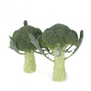 pr-agro-orantes-f1-brokkoli-rajk-czvaan
