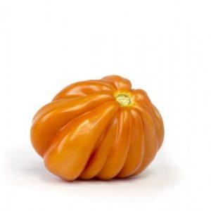 pr-agro-rugantino-f1-tomat-rajk-czvaan