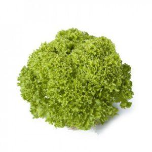 pr-agro-lugano-f1-salat-rajk-czvaan