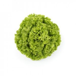 pr-agro-olmeti-f1-salat-rajk-czvaan