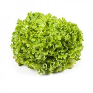 pr-agro-otili-f1-salat-rajk-czvaan