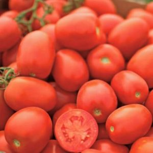 pr-agro-petrarossa-f1-tomat-vilmorin