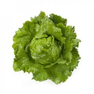 pr-agro-santarinas-f1-salat-ajsberg-rajk-czvaan