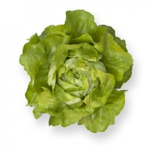 pr-agro-santoro-f1-salat-rajk-czvaan