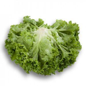 pr-agro-starfajter-f1-salat-rajk-czvaan