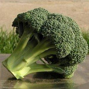 pr-agro-ajronmen-f1-brokkoli-seminis