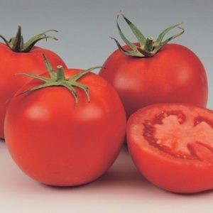 pr-agro-gs-12-f1-tomat-singenta