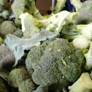 pr-agro-stil-bl-f1-brokkoli-seminis