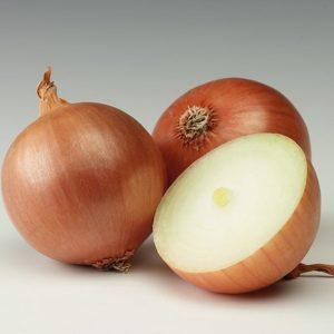 pr-agro-vizion-f1-luk-singenta