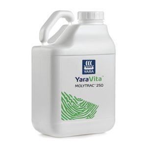 yaravita-molitrak