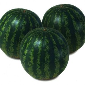 pr-agro-krimstar-f1-arbuz-sakata