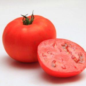 pr-agro-mirsini-f1-tomat-seminis