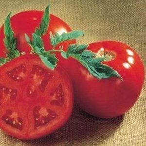 pr-agro-sanrajz-f1-tomat-seminis