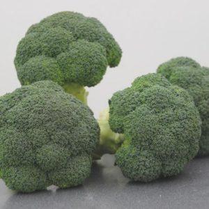 pr-agro-koros-f1-brokkoli-vilmorin