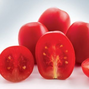 pr-agro-metro-f1-tomat-nyunems