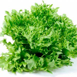 pr-agro-finstar-f1-salat-nyunems