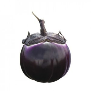 pr-agro-sabelle-f1-baklazhan-rajk-czvaan