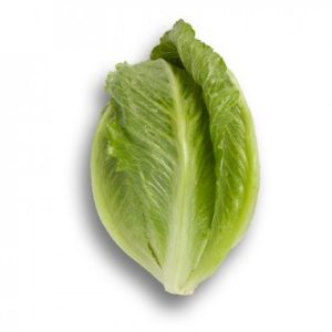 pr-agro-kranchita-f1-salat-rajk-czvaan