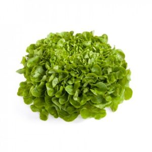 pr-agro-kuk-f1-salat-rajk-czvaan