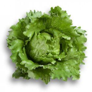 pr-agro-umbrinas-f1-salat-ajsberg-rajk-czvaan