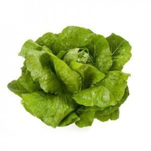 pr-agro-viktorinus-f1-salat-rajk-czvaan